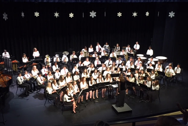 MS Band/ Choir/ Strings Winter Concert